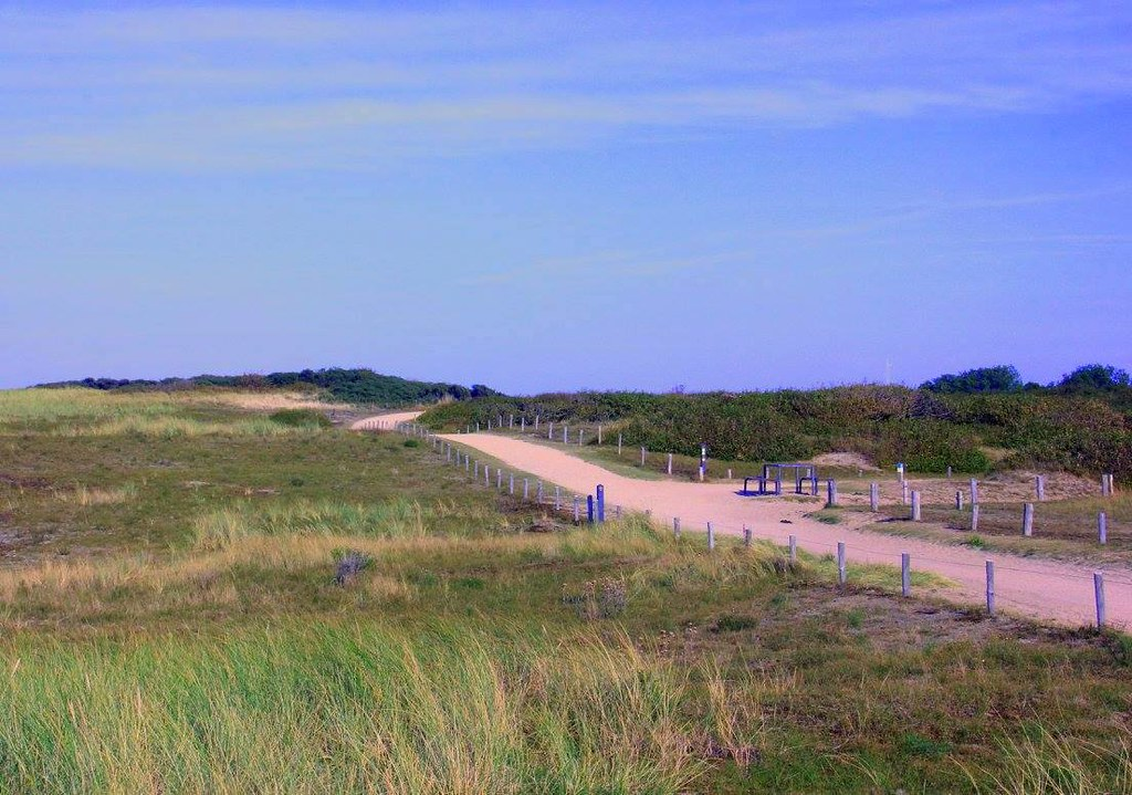 Sand dunes of Zeeland are very famous