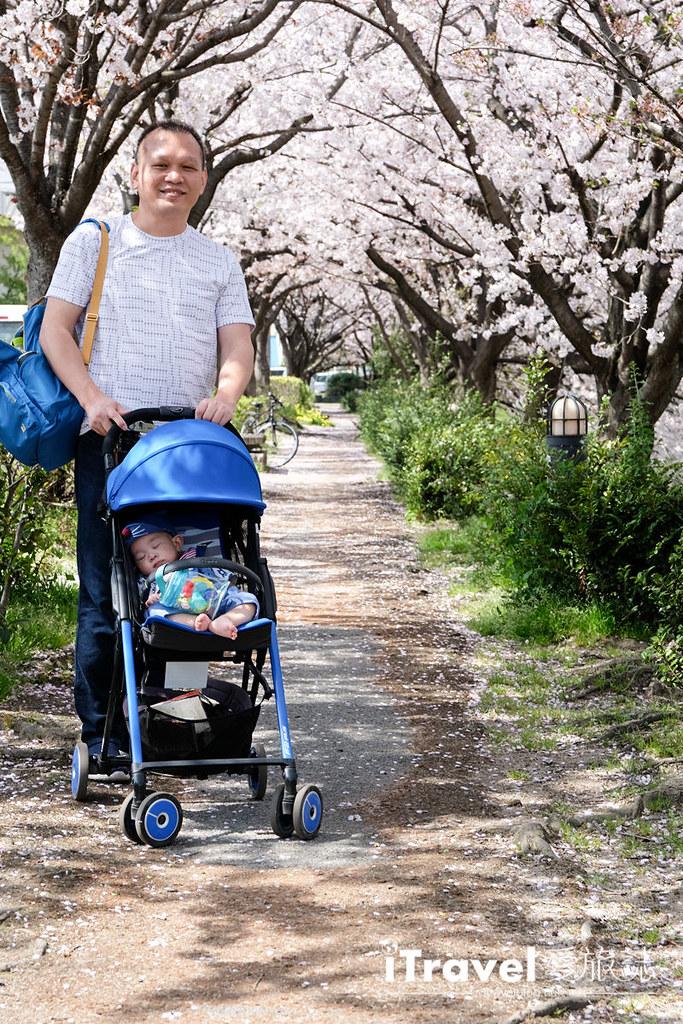 輕量型嬰兒車推薦 Combi F2 Plus (44)