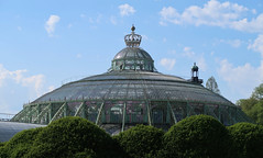 royal greenhouses - copyright travelformotion 18