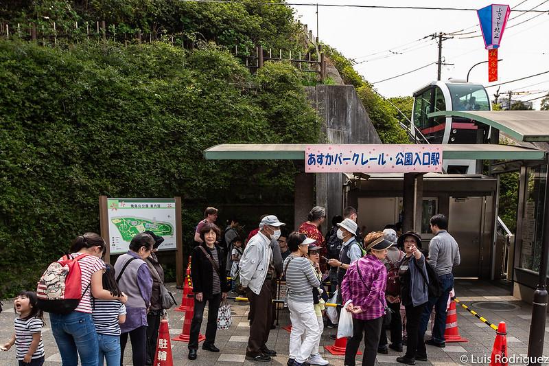 Linea-Toden-Arakawa-Tokyo-Sakura-Tram-38