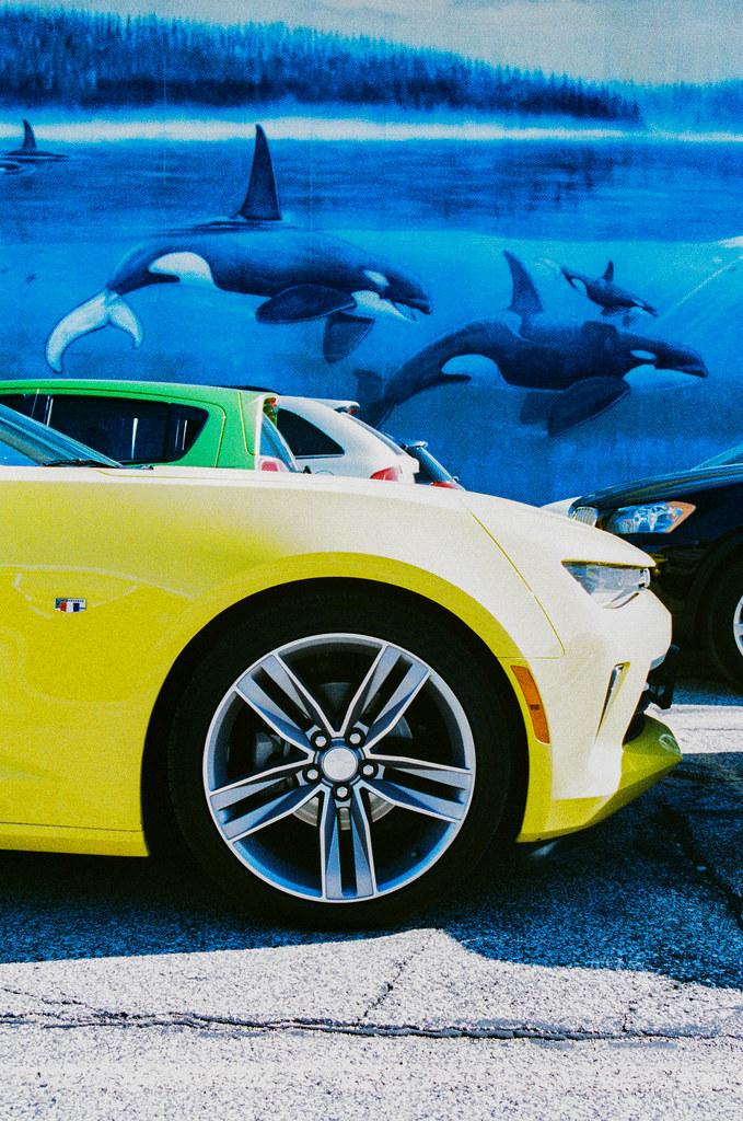 Corvette snout