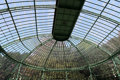 royal greenhouses - copyright travelformotion 25