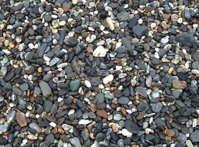 七星潭の浜辺
