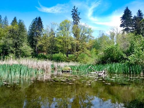 Lake Samish Paddling-79