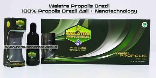 Herbal Propolis Brazil