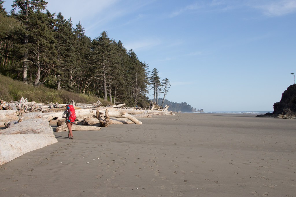Campsite scouting on Olympic Peninsula