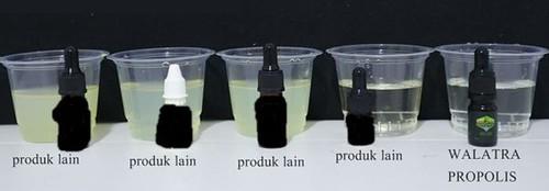 perbedaan propolis brazil + nanoteknologi dengan yang bukan