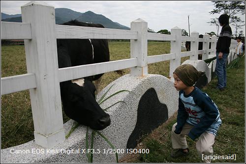 b-20090103_101544.jpg