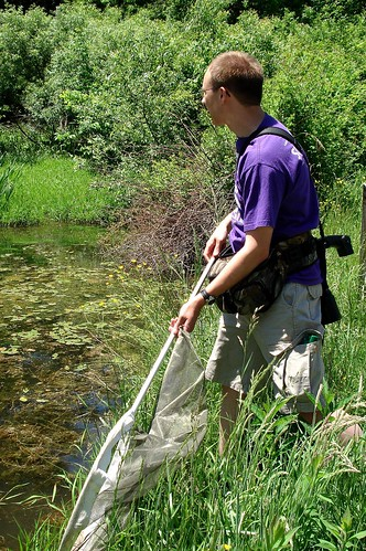 Jeremy catching dragonflies
