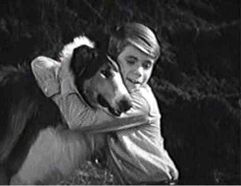 Timmy-n-Lassie: Arf
