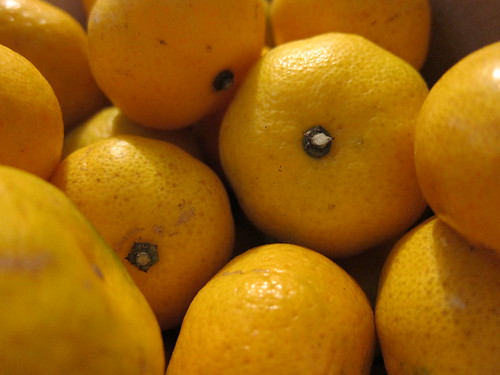 Tiny Oranges