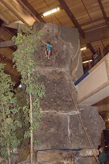 Nora on rock climbing wall