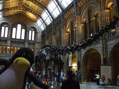 Tux at Natural History Museum