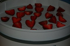 Tray of Strawberries