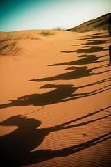 Saharan Shadows