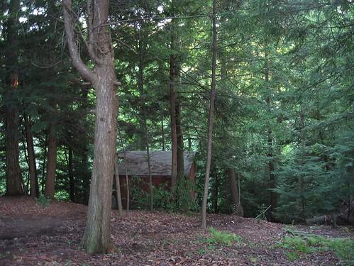 the hillside hut