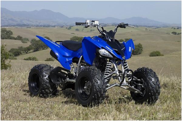 Yamaha Grizzly X Atv