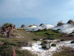 St. Joseph's Dunes