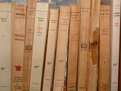livres à la fenêtre