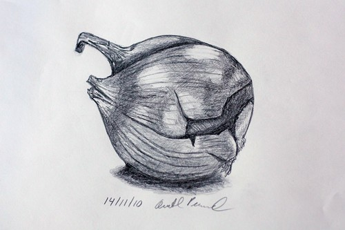 Onion Drawing