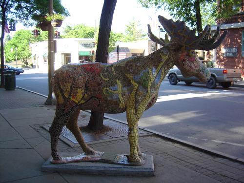 Arborial moose