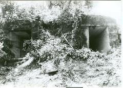 tunnel in banawa 1