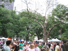 the crowd at Madison Square Park