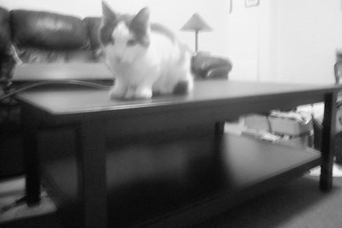 Aremid new coffee table bw