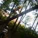 20070927-DSCF0030-4.jpg
