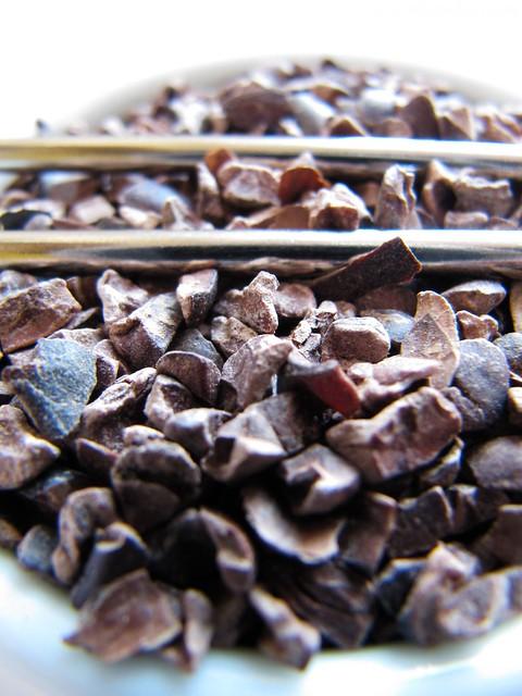 Amêndoas de cacau, cocoa nibs por PratoFundo.com