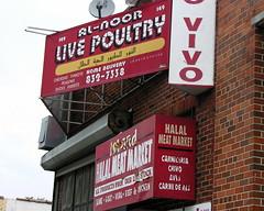 Al-Noor Live Poultry
