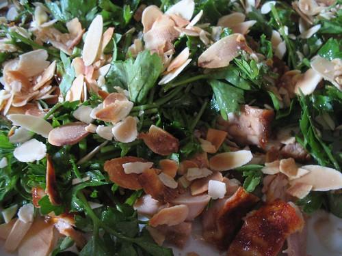 petrezselymes csirkesaláta