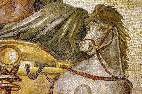 O Cavalo De Poseidon Gaziantep Museum Zeugma, Turkey Mosaic On Flickr U2013  History