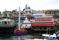 Friday Harbor, San Juan Island