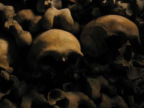 Skulls in Les Catacombes.