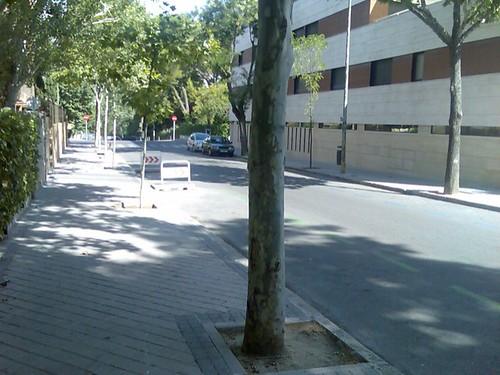 Nadie en Madrid