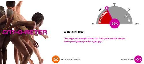 gay-o-meter b