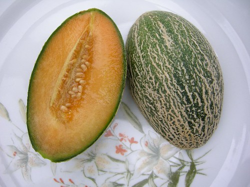 Northern Melon Mix