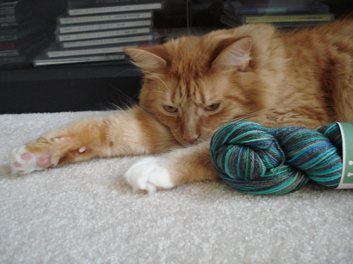 Oscar and the new Zen String