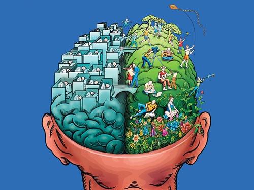 hemisferios-dcho-izqdo
