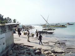 Dar es Salaam fish port