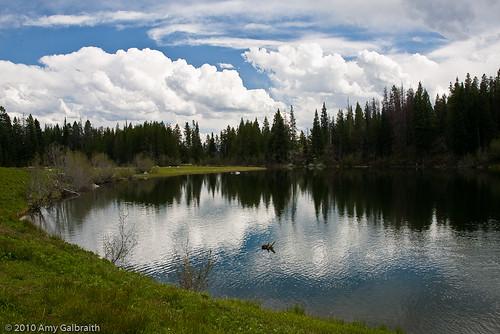 Trapper Lake