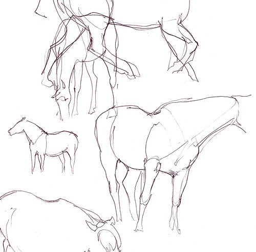Horse sketches.