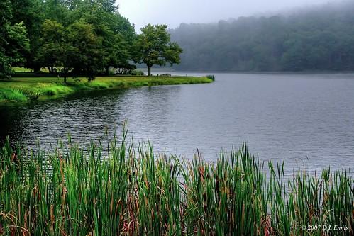Morning on Abbot Lake