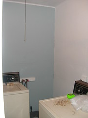 panted laundry room