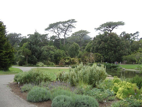 SF Botanical Garden
