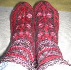 SILs Caspian Socks1