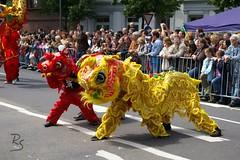 Parade der Kulturen (2007) 036.jpg