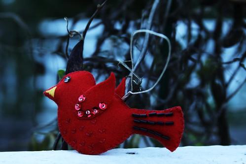 Schnookie's bird