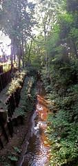 Tamagawa water canal